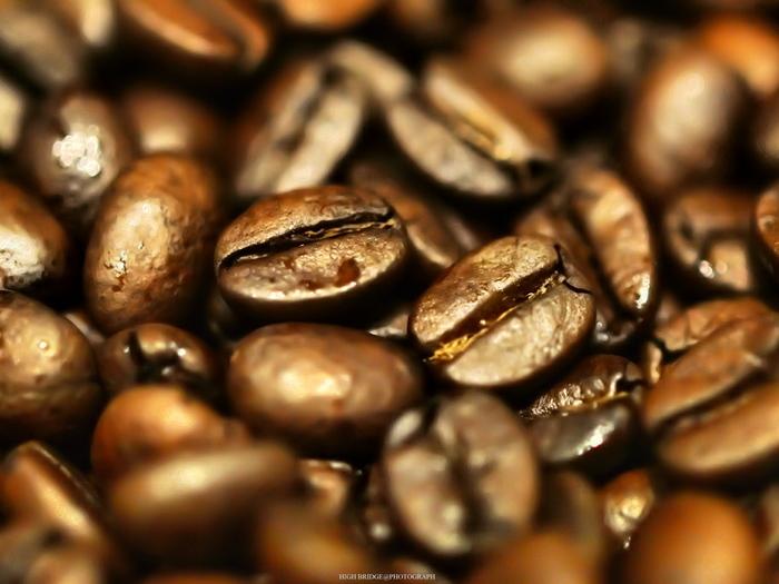 コーヒー豆と一言で言っても、様々な種類があり、産地があります。中でも代表的なところでは、酸味が豊富で香り豊かなキリマンジャロ。苦味や香り、そして奥深い甘みのバランスが良いブルーマウンテン。マイルドな味が印象的なモカ、そしてまろやかな風合いのハワイコナコーヒーなど、他にもたくさんの産地や種類があります。