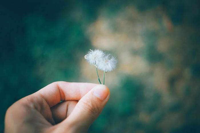 さて、ここまでは人から親切にされた時のお礼の仕方についてご説明してきました。でも、本当の「愛され上手」になるには、まず自分から行動を起こすのが一番です。それは、いつも周りの人に親切にするよう心がけること。つまり、親切にしてもらったからお返しするのではなく、自分から親切の種を撒いておくのです。