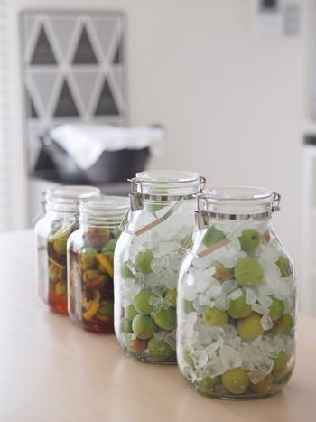 お砂糖に果物のエキスを抽出して、長期間味わうことができるようにする自家製シロップ。瓶やグラスにも凝ってみると、いろいろな果物で、何度も作ってみたくなるものです。今回ご紹介したレシピを参考に、自由に自家製シロップを楽しんでみてくださいね♪