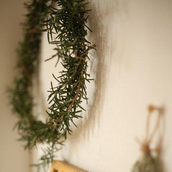 ローズマリーのリースをお部屋に飾れば、爽やかな香りで元気いっぱいに過ごせそうですね!