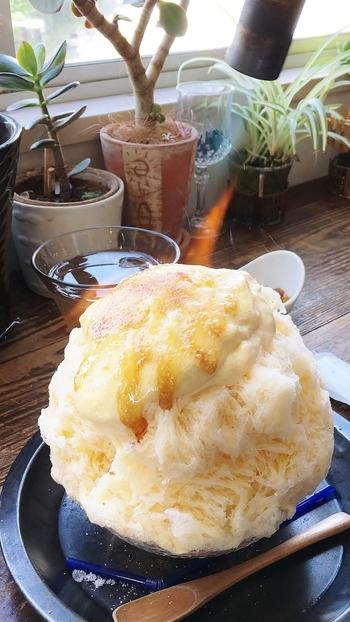 バナーを使って目の前で炙るかき氷は、見た目も味もインパクト大!ブリュレのパリパリ感&クリームのトロトロ感は、何度でも味わいたくなる美味しさです。氷のシロップの甘さとのバランスも絶妙☆