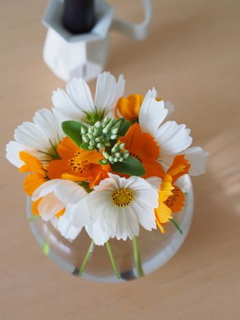 お部屋に飾ってある花も、ハロウィンカラーに変更♪さりげなさがとっても素敵!