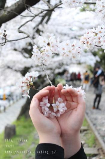 日本の季節を楽しむ姿勢も、千恵さんのブログや書籍の魅力です。季節の行事、旬の食材など、改めて意識して日々の生活を送ってみましょう*