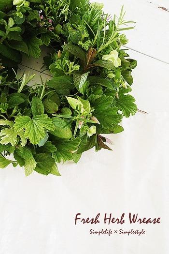 摘みたてのハーブが薫る、みずみずしいグリーンのブーケ。給水スポンジの「オアシス」を円状に丸めた「リースオアシス」をベースに作っています。霧吹きでスポンジと葉に水を吹き付ければ10日間ほど楽しめますよ。