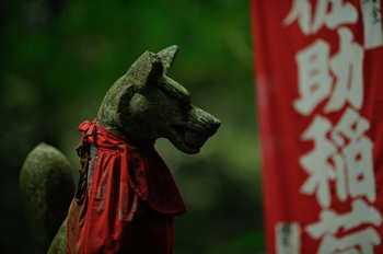社務所正面にある霊狐泉は「水に恵まれなかった鎌倉の田畑を潤した水源」とされパワースポットになっています。今も湧き出る水は、ご神水として持ち帰ることもできるそうです。