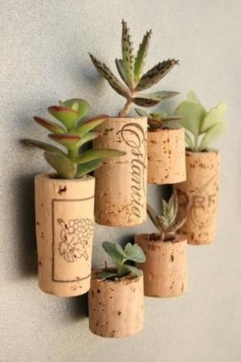 コルクをくり抜いて作るミニプランターには、ぷっくり可愛い多肉植物を入れて。磁石を貼って、壁面につけることもできるんですね。