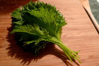 """さわやかな香りで料理へのアクセントとしても人気の青じそ(大葉)※には、ビタミンやミネラルが豊富、という嬉しい一面も。夏バテで栄養不足の時には、薬味に使って栄養をチャージしましょう!  ※大葉とは、青じその""""葉っぱの部分""""をさす呼び名です。"""