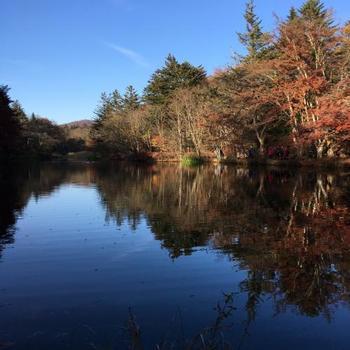 空と池、草木のコントラストが美しく、新緑や紅葉、雪景色など四季折々の景色を楽しむことができますよ。