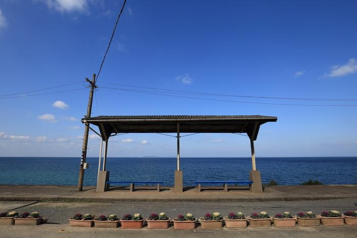 下灘駅構内からは素晴らしい眺望が待っています。抜けるような青空、眼下に広がる伊予灘、遠くに見える水平線が織りなす景色は絶景そのものです。