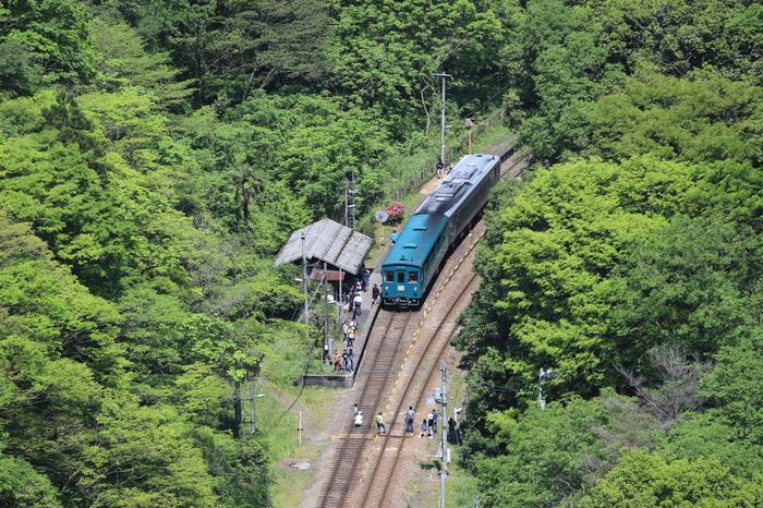 1950年に開業された坪尻駅は、猪ノ鼻峠付近で標高272メートルの位置にあり、周辺にあるのは山林だけです。