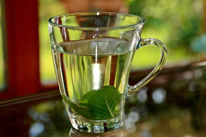 ミントの葉とレモンの輪切りや皮をミネラルウォーターに入れ、ピッチャーで冷やしておくだけで爽やかなミント水に。