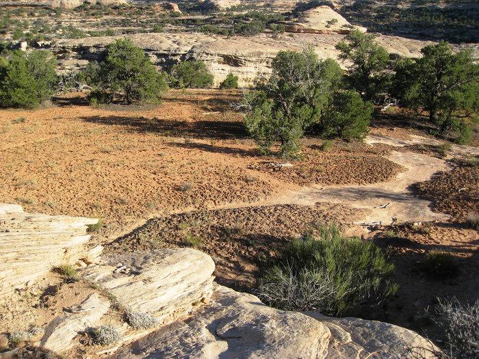 人気のアースカラーは、大地の土や砂、木の葉など自然のカラーをイメージして。