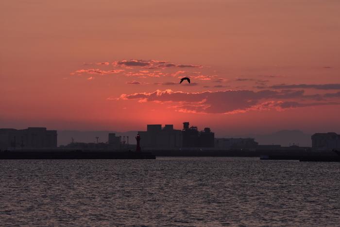 水に浮かんでいるかのように見える北海道は釧路の街。燃えるような赤が印象的です。
