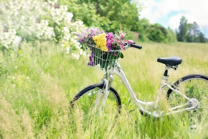 アウトドア派さんは、サイクリングに出かけましょう♪ ちょっと遠くの知らない町を行けば、お気に入りのカフェやパン屋さんと出会えるかも。