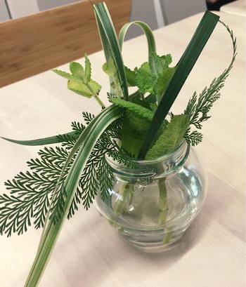 生活に「ミント」を取り入れる方法はいろいろあります。他の草花と一緒にガラス瓶に生けても涼し気ですね。