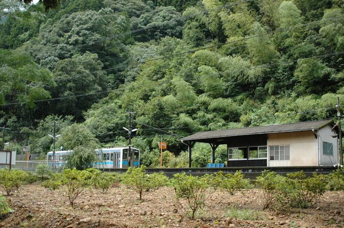 海路駅の隣駅でもある瀬戸石駅は、1910年に開業された無人駅です。山間と球磨川に挟まれた小さな無人駅は、開業から100年以上もの時間を静かに刻み続けています。