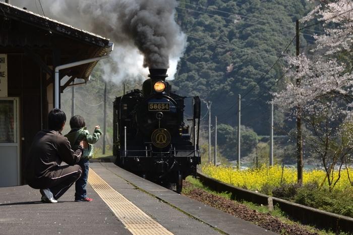 瀬戸石駅へは、今はほとんど見かけることが無くなってしまった蒸気機関車が乗り入れています。煙をもくもくと吐き出す蒸気機関車が、小さな瀬戸石駅へ乗り入れる様子を眺めていると、駅開業時の約100年前にタイムスリップしたかのような錯覚を感じます。