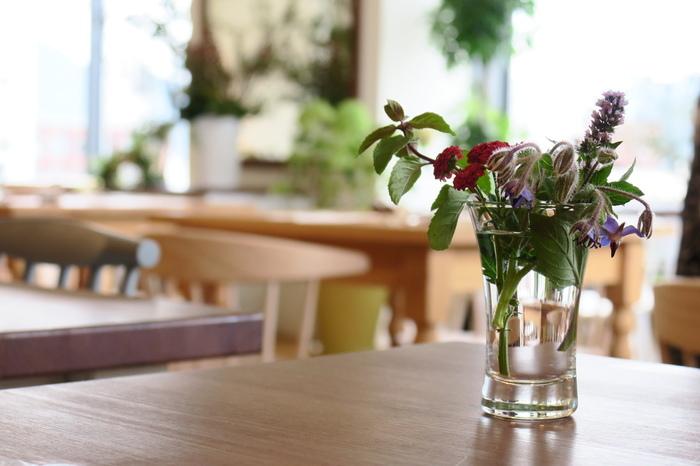 おいしいスイーツとドリンクで、くつろぎの時間を与えてくれる札幌のカフェに、出かけてみませんか。