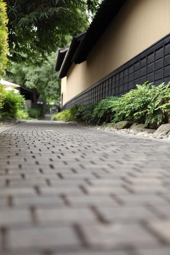 小布施では町歩きが楽しい♪ 「え?こんなところを進んで良いの?」という狭い軒先を行けば、日本酒店やカフェが顔をのぞかせ、わくわくする出会いが待っています。