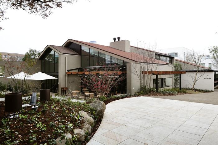 代官山駅すぐの「IVY PLACE」。緑に囲まれたおしゃれなレストランです。