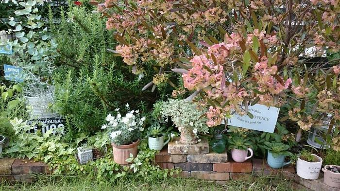 収穫も愉しめる美しい庭園★ポタジェガーデン★基本のき