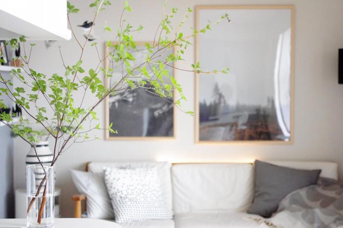 夏のおうち時間を涼しく過ごすために、フレッシュでみずみずしいグリーンの植物をインテリアに取り入れて、涼しげで爽やかな空間を演出してみませんか?今回は、夏におすすめの植物のアレンジや飾り方をご紹介します。