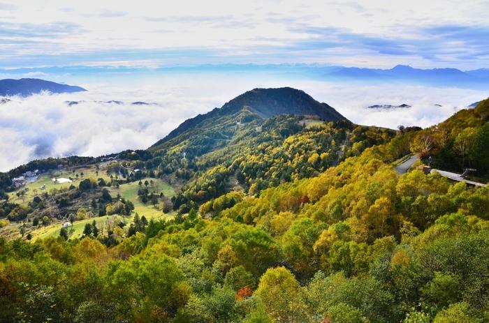 159ヘクタールという広大な敷地面積を誇る山田牧場は、標高1500メートルの高原に位置しています。豊かな自然に囲まれた山田牧場の敷地内では、どこを切り取っても絵になります。