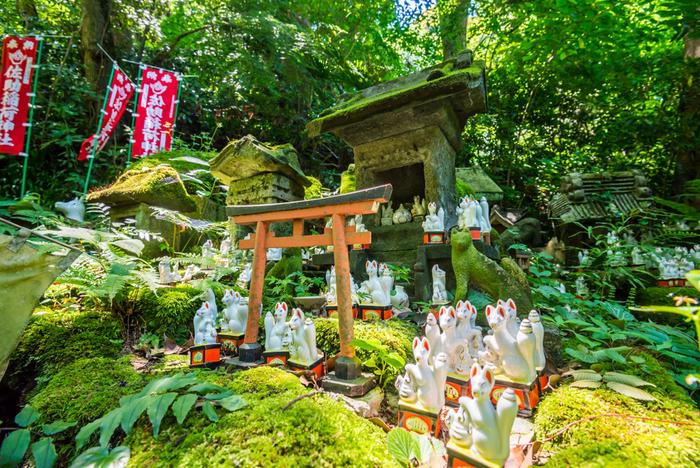 境内には、稲荷神の使いとされるキツネの置物がたくさんあって幻想的な雰囲気です。