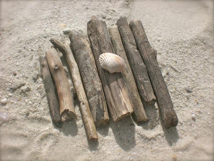 海や川に行って見つけたらぜひ拾っておきたい流木。アイデア次第でナチュラルでおしゃれな雑貨に変身します。