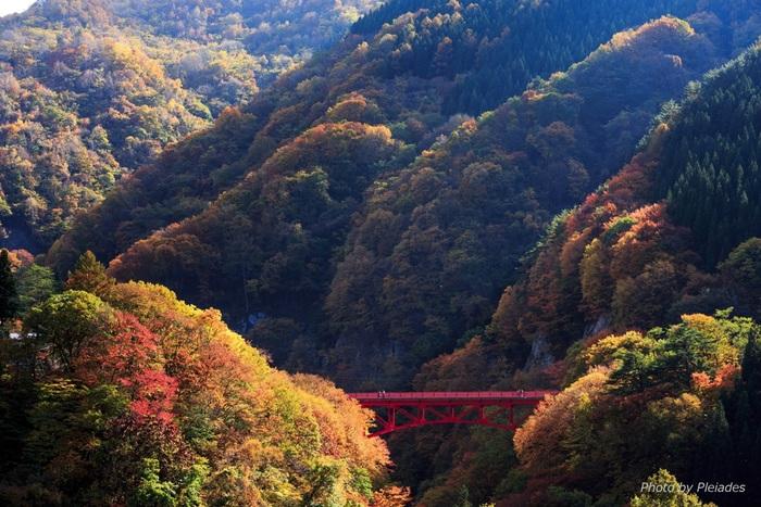 信濃川の支流、松川が悠然と流れる松川渓谷は、高山村屈指の景勝地です。四季折々で美しい姿を見せてくれる深いV字渓谷は、晩秋になると渓谷全体が錦をまとったかのような姿へと変貌します。自然が織り成す美しい四季の絶景を堪能してみましょう。