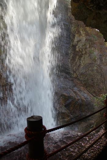 雷滝は全国でも珍しい滝の裏側に入ることができる「裏見の滝」となっています。白いしぶきが舞い散る水爆の裏側から、迫力ある瀑布を眺めてみてはいかがでしょうか。