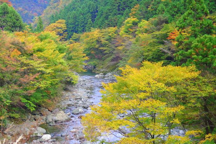 春は新緑、夏は深緑、秋は紅葉と四季折々で美しい姿を見せてくれる殿川内渓谷は、上勝町を代表する景勝地のひとつです。勝浦川上流部に位置する殿川内渓谷は、中部山渓県立自然公園の一部でもあり「とくしま水紀行50選」にも選定されています。