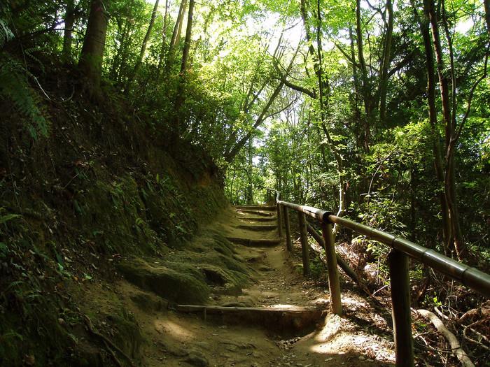 【山道は、整備されているので概ね歩きやすく、初心者でも挑戦しやすいコースです。】