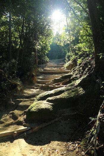 銀閣寺方面へは、緩やかで歩きやすい山道が続いています。