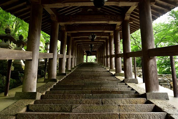 階段は長いものの、見どころが多く登りやすいのが、奈良の「長谷寺(はせでら)」です。(紫陽花で人気な、鎌倉の「長谷寺」とお間違いなく)  特に、仁王門から本堂まで108間、399段の登廊は見事。のぼりながら、108の煩悩を落とし、最後399段を登りきり、そして400段(死)を越えてご本尊にお参りするという意味が込められているそう。