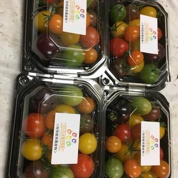 都内の著名レストランにも納入する榎本農園の本拠だけに、ご自慢のトマトが手に入ります。