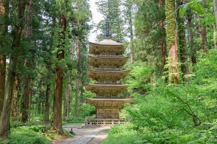 杉並木の参道の途中には、吉永小百合さんのCMでも有名な国宝「五重塔」も。端正な姿に圧倒されますね。
