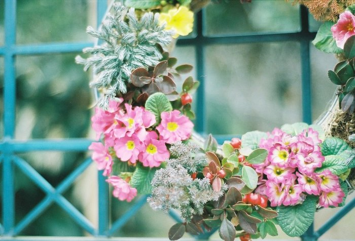 春が来た♪ お部屋を華やかに彩る「春リース」のアイデア集