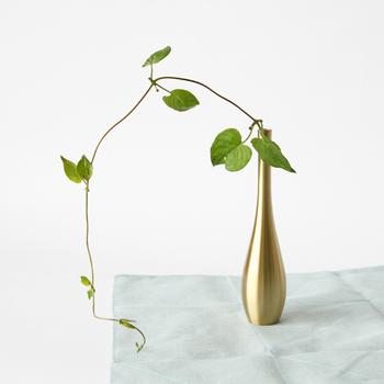 シンプルな曲線が美しい真鍮で作られた花瓶「そろり 真鍮」。つる植物を1本入れるだけで絵になりますね。和室にも洋室にも合うデザインです。
