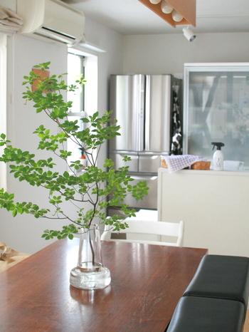 Flora ベースに瑞々しいドウダンツツジを飾って、爽やかな雰囲気に。倒れにくい安定したデザインなので食卓に置いても安心です。