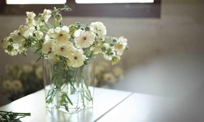 幅の広い花瓶は、色々な種類のお花をコーディネートするのにも向いていますが、フラワーアレンジメント初心者の方は一種類に絞れば失敗なく素敵に仕上げることができますよ。淡いオフホワイトの「ラナンキュラス」は、上品で爽やかな雰囲気を演出してくれます。