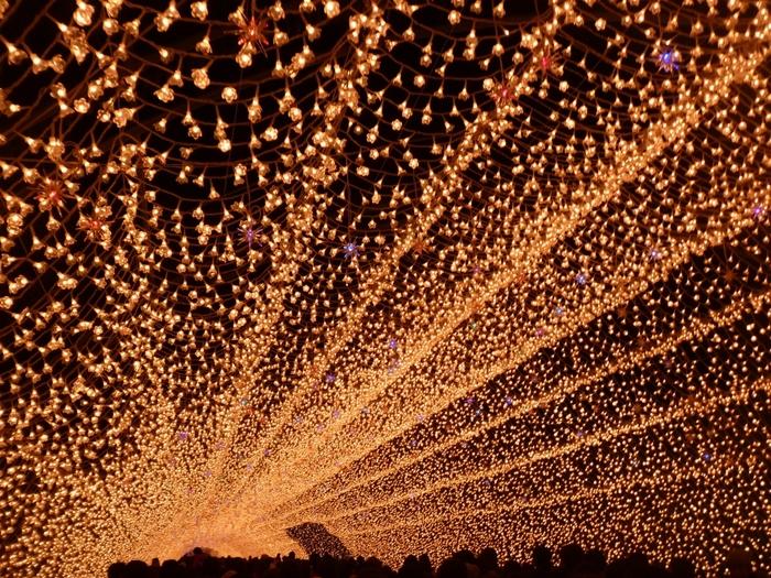 光のトンネル。 まばゆい光が圧巻です。