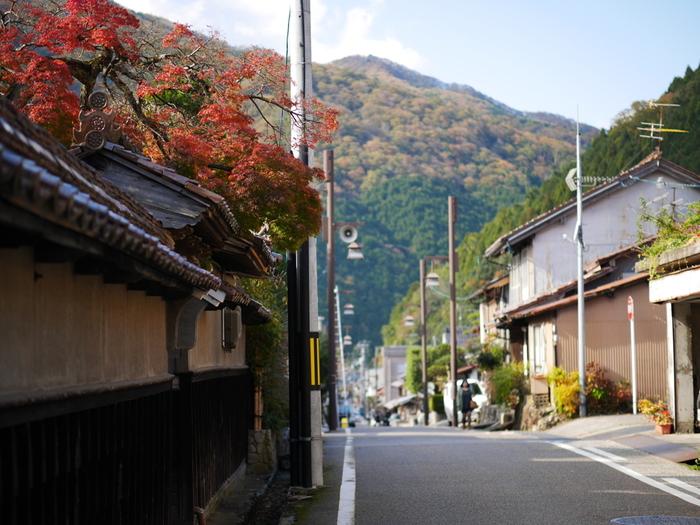 山間に佇む小さな町ではあるものの、智頭町は古くから宿場町として栄え、交通の要所として重要な役割を果たしてきました。