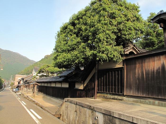 因幡の国(現在の鳥取県山陰地方)と上方(現在の大阪)を結ぶ因幡街道と、岡山県へと通じる備前街道の合流地点となっている智頭宿は、奈良時代から宿場町として栄えていました。現在でも、智頭宿の街並みは、参勤交代が行なわれていた江戸時代の面影を色濃く残しており、ここに一歩足を踏み入れると時代劇のロケ地に迷い込んだような錯覚を感じます。