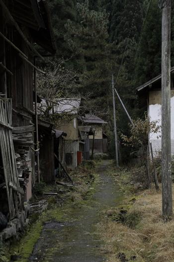 自動車が入れないほどの細い路地は舗装されておらず、路地の両横には、江戸時代から昭和初期にかけて建てられた古民家が軒を連ねています。板井原集落は、まるで数世紀前から時間が止まっているかのような錯覚さえも感じます。