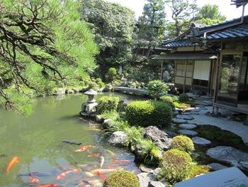 広大な敷地には、いくつもの美しい庭園が現存しています。豪商の繁栄ぶりを今に伝える石谷家住宅の庭園は、鳥取県の名勝に指定されています。