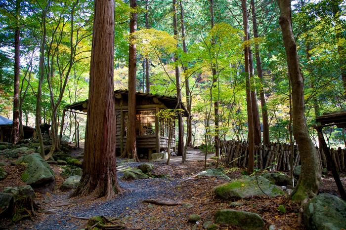 「日本屈指の渓谷美」と評される芦津渓谷の渓谷沿いにはよく整備された遊歩道が敷かれています。本格的な登山装備が無しで、ブナやミズナラの巨木が生い茂る原生林をハイキング気分で気軽に散策することができます。