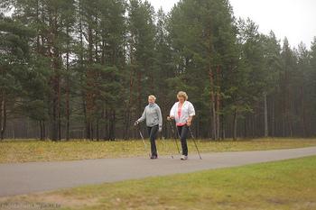 舗装路のほうが歩きやすくて安心、という方は、身近な自然公園や森林遊歩道などを歩いてみては。