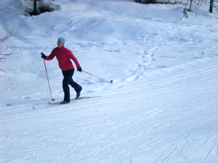 こちらがクロスカントリースキー。確かに長いポールや、大股に歩くフォームが似てますね!