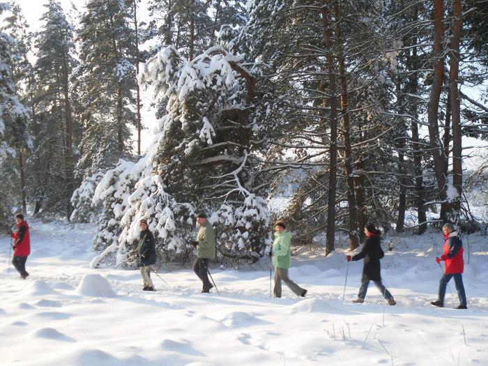 冬はノルディックスキー、あるいはスノーシューを履けば、行動範囲が一気に広がります。